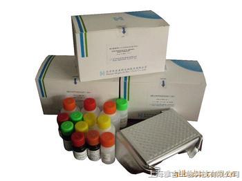 青霉素链霉素(-20℃)