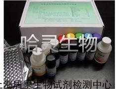 大鼠凝血因子IXELISAKit,大鼠(FIX)ELISA试剂盒