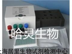 大鼠一氧化氮合成酶ELISA检测试剂盒,大鼠(NOS)ELISAkit