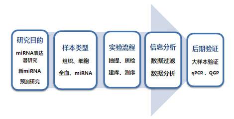 hsa-miR-483-5p mimics