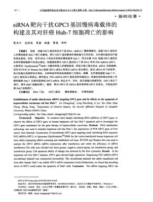 siRNA plasmid(SiRNA质粒), pKD-Androgen Receptor-v1