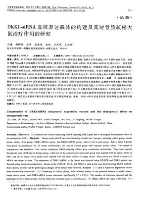 siRNA plasmid(SiRNA质粒), pKD-MKK4/SKK1-v4