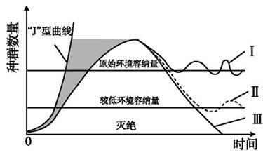 三色预染蛋白质分子量标准(10-180 kDa)