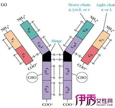 30 nm银纳米颗粒