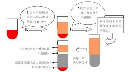 大鼠胰岛细胞分离液试剂盒