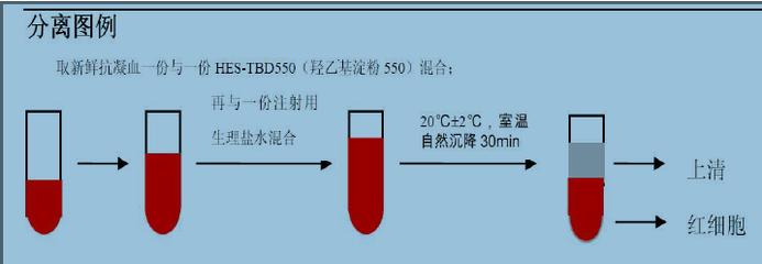 细胞周期与凋亡检测试剂盒