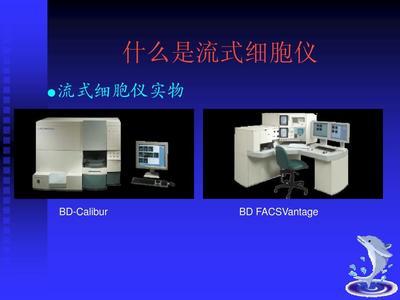 PeproTech Human IL-1α Mini TMB ELISA Development Kit