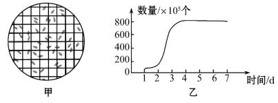 酵母缺陷型培养基 SD-Trp-Leu-His-Ade