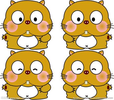 BALB/C nudle 裸鼠