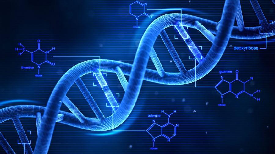ArcherDX BRCA1/2基因突变检测试剂盒Illumina平台