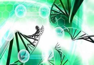 BRCA基因检测标准品