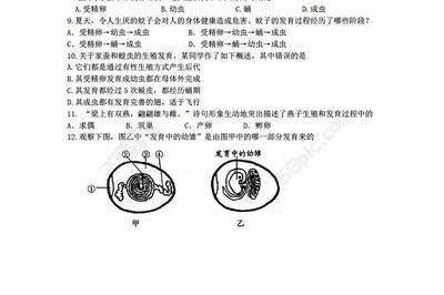 支原体(Uu/Mh)鉴定、计数、药敏试剂盒