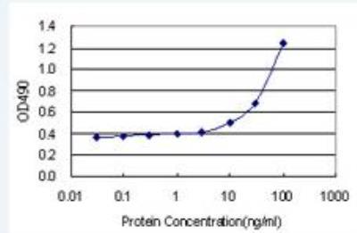 Novus/DNA polymerase delta p50 Antibody Pair (H00005425-AP21)/H00005425-AP21/1 Set