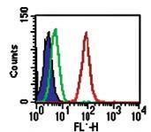 Novus/Intracellular Receptor Staining Flow Cytometry Kit (NBP2-29450)/NBP2-29450/1 Kit