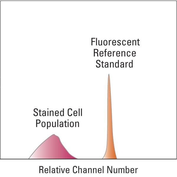 polysciences/BLI897ABLI897A-1Acridine Orange Reference Standard/14 ml/BLI897C-14