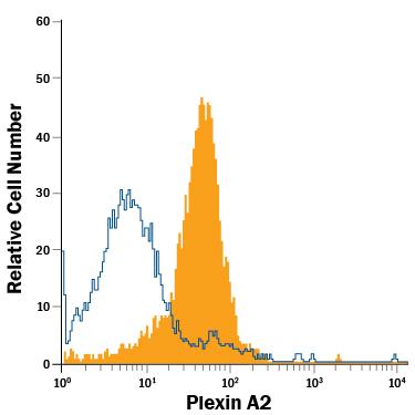 R&D Systems/Human/Mouse/Rat PlexinA2 APC-conjugated Antibody/FAB5486A/100 Tests