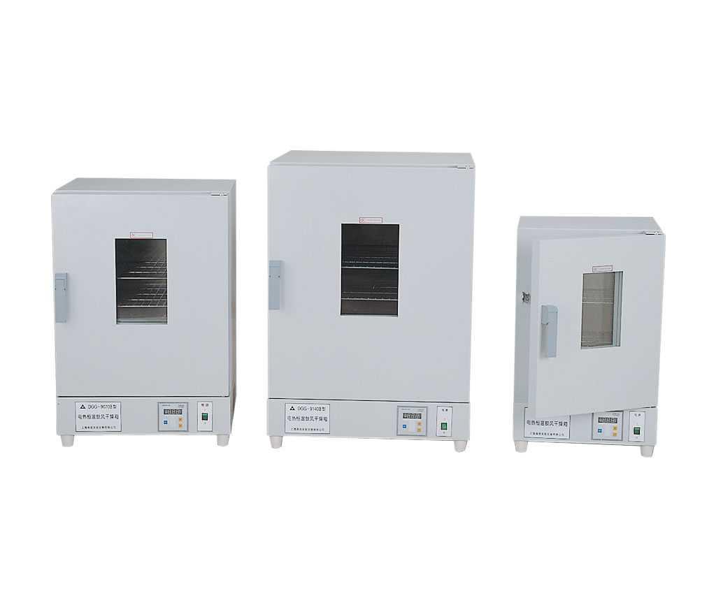 300℃立式电热鼓风干燥箱/电热鼓风烘箱/电热恒温干燥箱(可选十段编程)