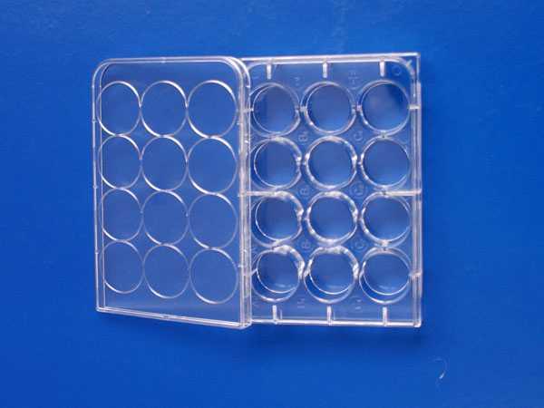 12孔平底细胞培养板,TC处理,PS,无热源无菌