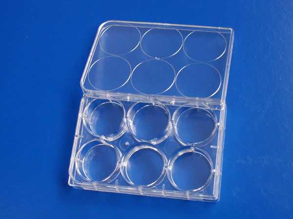 6孔平底细胞培养板,TC处理,PS,无热源无菌