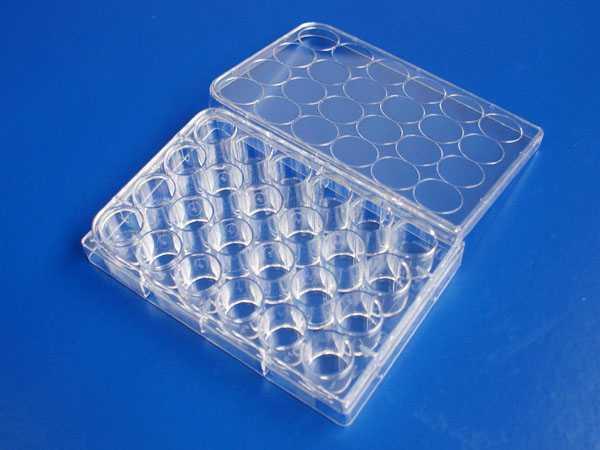 24孔平底细胞培养板,TC处理,PS,无热源无菌
