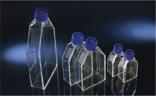 NUNC175c㎡密封盖/透气盖培养瓶