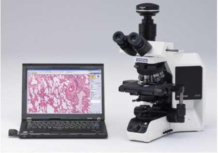 OLYMPUS BX53奥林巴斯显微镜