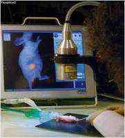 Fluoptics –开放式实时 成像系统(同时适用于大,小动物)