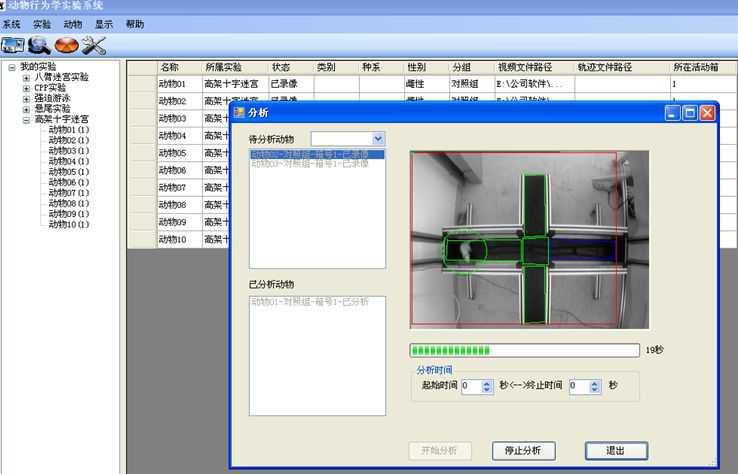 高架十字迷宫实验视频分析系统