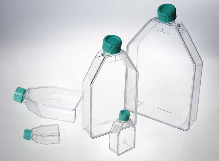 50ML细胞培养瓶 TCP011050