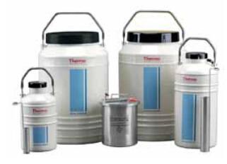 Thermo Scientific Thermo液氮转移罐
