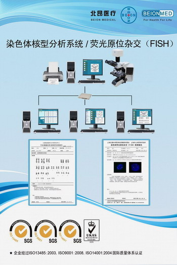 染色体核型分析系统