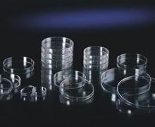 细菌培养皿9.0CM