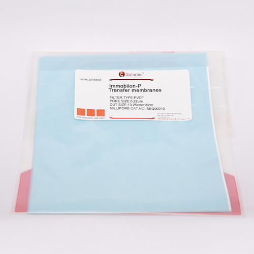 Western Blot NC膜(0.22um)