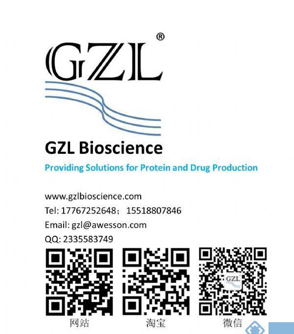 Z2 超保真DNA聚合酶