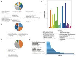 蛋白质组学影像系统