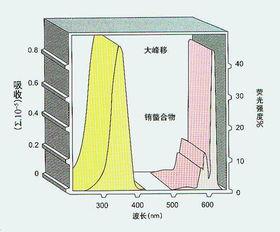 全自动时间分辨荧光免疫分析系统