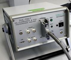 光纤型双通道PAM-100荧光仪
