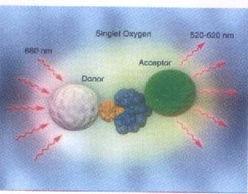 药物筛选与受体研究试剂 AlphaScreen