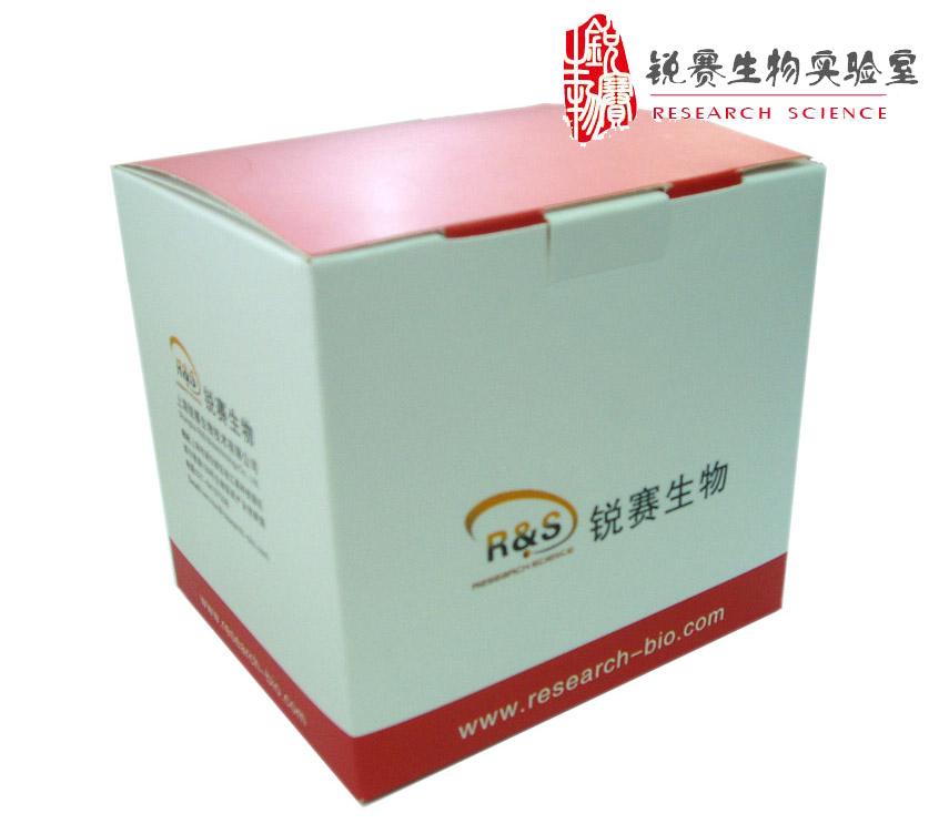 Annexin V-EGFP/PI双染法细胞凋亡检测试剂盒