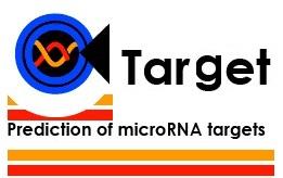 芯片差异microRNA靶基因分析