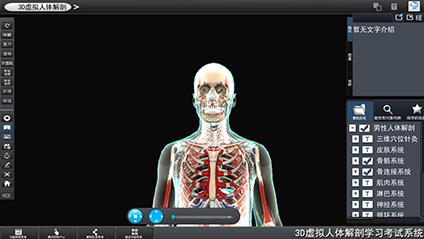 三维虚拟人体解剖
