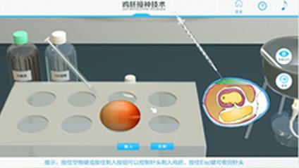 鸡胚接种虚拟实训
