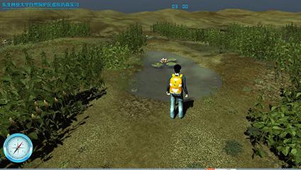 东北林业大学自然保护区虚拟仿真实习