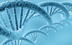遗传性肝病分子筛查