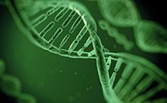 遗传性心血管疾病基因检测