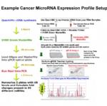 miRNA定量PCR检测