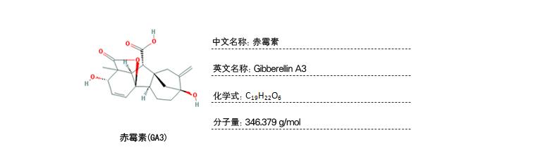 植物样品激素含量检测-赤霉素