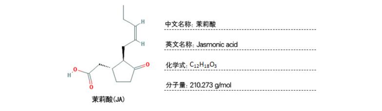 植物样品激素含量检测-茉莉酸类