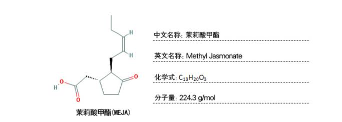 植物样品激素含量检测-茉莉酸甲酯