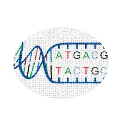 基因组测序数据分析